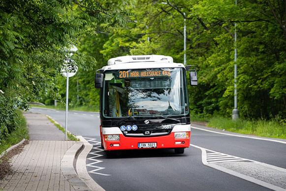 Prague_Buses